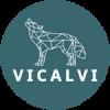 PMV - Consultant digital Lyon